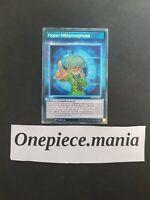 Yu-Gi-Oh! [SD-SKILL] Hyper-Métamorphose : SS03-FRBS1 -VF/Commune-
