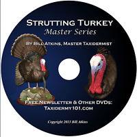 Learn Turkey Taxidermy DVD for Beginners - Taxidermy Training
