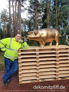 Deko Schwein lebensgroß lebensecht goldfarben lackiert mit zwei Bodenanker #de