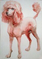 Pink poodle pet lover art on paper,dog art,wall decor, unique dog lover gift
