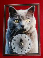 Horloge pendule chat chartreux 3 clock cat uhr katze reloj gato