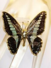 Vintage Victorian Butterfly Brooch Made w Real Butterfly Wings Heavy Gold Plate