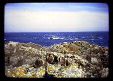 35mm Half frame slide 1963 - FISHING BOAT SEAGULLS PETERHEAD SCOTLAND