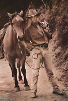 POSTER  : COWBOY #2 WITH HORSE  - MALE MODEL -  FREE SHIPPING ! #2890  RW10 P