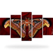 Schmetterling Insekten Tiere Bild Bilder Wandbild Kunstdruck  5 Teilig