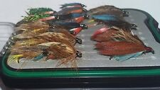 20 Sea Trout Fishing Flies In a Waterproof Fly Box