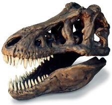 "Tyrannosaurus rex Dinosaur T rex Fossil Skull Replica with Stand 13"" x 8"" x 11"""