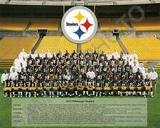 2013 PITTSBURGH STEELERS NFL FOOTBALL TEAM 8X10 PHOTO PICTURE