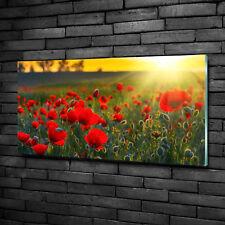 Glas-Bild Wandbilder Druck auf Glas 120x60 Deko Landschaften Mohnfeld