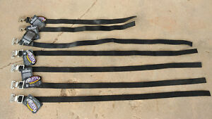 Weaver Leather Livestock MultiPurpose Tie Straps - five 3' & two 2' lengths