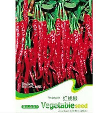 Long Red Pepper Seed Vegetable Seed Spicy ~1 Pack 30 Seeds~ Free Shipping