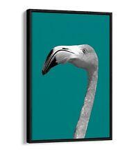 FLAMINGO HEAD TEAL -FLOAT EFFECT CANVAS WALL ART PIC PRINT- BLACK & WHITE