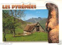 Fantasie - cpsm - die Pyrenäen - Regard auf der nature ( i 1496)