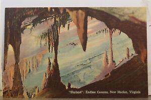 Virginia VA New Market Endless Caverns Skyland Postcard Old Vintage Card View PC