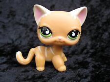Littlest Pet Shop #525 Sportiest Race About Ranch Orange Stripe Cat Green Eyes