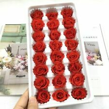 Box Immortal Rose Heads Preserved Eternal Flower Valentines Gift Home Decoration