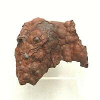 Kidney Ore Hematite Florence Mine Cumbria UK Mineral Specimen 206g 7cm