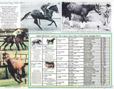 Race Horse Hoist the Flag  picture pedigree chart
