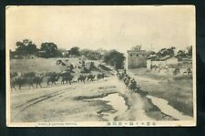 postcard CHINA Camels Leaving PEKING used 4 stamps to New York USA