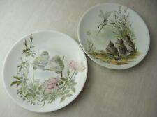 Lot d'assiettes, décor oiseaux, H. Arndt, Vohenstrauss Johann Seltmann