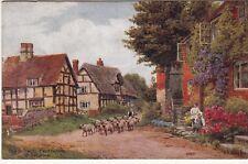 Postcard - OLD COTTAGES, CROPTHORNE, NEAR EVESHAM