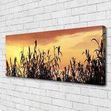 Leinwand-Bilder Wandbild Canvas Kunstdruck 125x50 Blätter Pflanzen