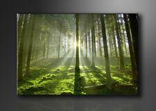 Marken Bild aufhängfertig USA 130cm XXL 4 6008/> Bilder