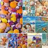 Full Drill Starfish DIY 5D Diamond Painting Cross Stitch Kits Home Decor Shell