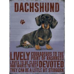 Dachshund Sausage Dog Magnet Gift