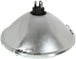 Wagner Lighting H6024BL Headlight Bulb