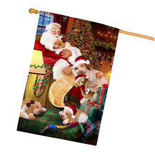 Bracco Italiano Dog and Puppies Sleeping with Santa House Flag
