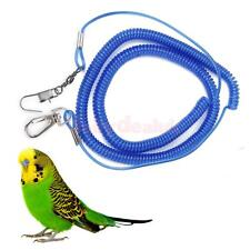 Parrot Bird Leash Flying Training Rope with 4mm foot ring - Random Color