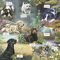 NEW Dog Jigsaw Puzzle 1000 Pieces Square Labrador Jack Russell Westie Spaniel