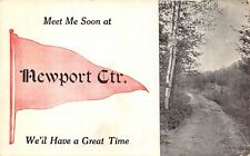 """We'll Have a Great Time"" at Newport Center Vermont~Birch Trees~1912 Pennant PC"