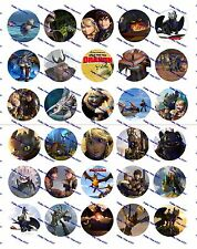 "30 Precut 1"" How to Train Your Dragon Bottle cap Images Set 2"