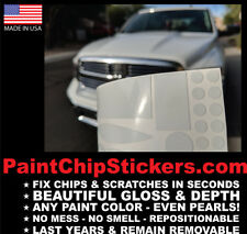Paint Chip Stickers - Body Color Matching Chip & Scratch Repair 2.7 X 5 inch kit