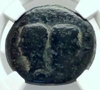 OCTAVIAN Augustus & JULIUS CAESAR Vienna Gaul Ancient Roman Coin NGC Rare i78897