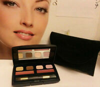 Discontinued CDior ADDICT Lipstick &Eyeshadow MULTI Palette ~ Pink & Brown