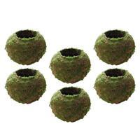 6pcs Creative Moss Ball Flower Pot Planter Bonsai Plant Holder Garden 12cm