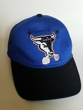 Durham Bulls MiLB Minor League Baseball Strapback Hat Cap Blue Pro Forma