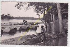 RPPC CPSM A.E.F. AFRIQUE GABON Formation des trains de billes de bois Okoumé