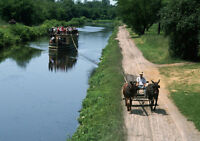 Art print POSTER Two Mules Pull Boat Along Erie Canal