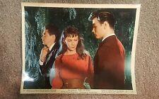JAMES DEAN East of Eden Original 1955 MOVIE Lobby Card WARNER BROS