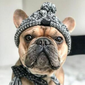 Genericb Winter Soft Dog Hat Knitted Hat Windproof Knitting French Bulldog Hats