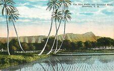 Hawaii, Hi, Th (Terr of Hawaii b4 statehood), Honolulu, Diamond Head 1910's Pc
