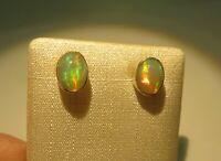 Edel Opal Ohrstecker Opal Earrings 925 Silber Nr. E8051