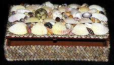 "Seashell Jewelry Treasure Chest Box ~ Assorted Polished Shells~ 5""X8""X1-1/2"""