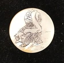 Engraved Shell Button With Skunk - Unusual Mammal