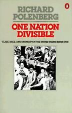 One Nation Divisible: Class, Race, and Ethnicity in the United States Since