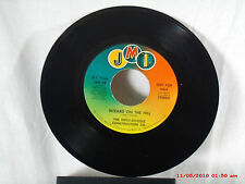 THE DIPSY-DOODLE CONSTRUCTION CO.-(45)-D.J. COPY-WIZARD ON THE HILL/MONO  - 1972